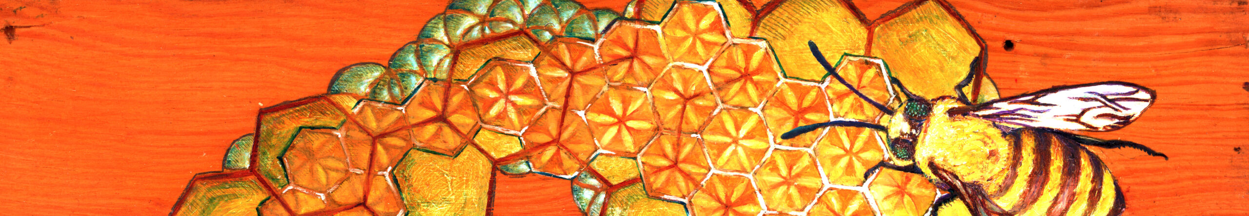 The image has a bee standing on top of a honeycomb. In the hexagons of the honeycomb you can see the seed of life which forms and also deconstructs the pattern of hexagons.